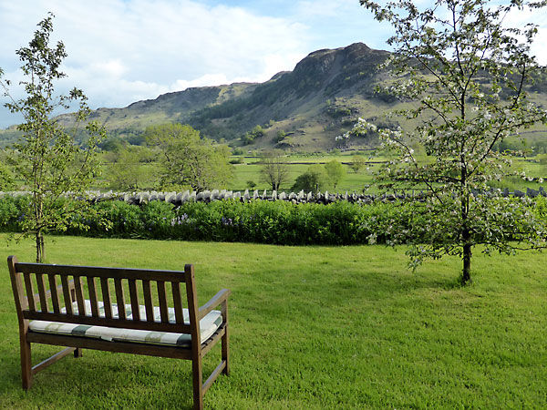 View to Lingmoor Fell from garden