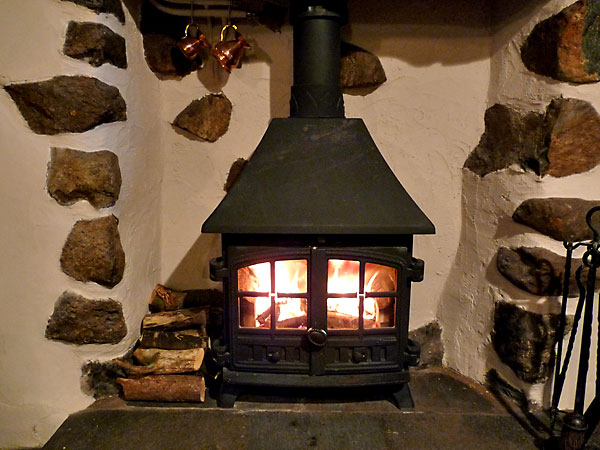 Log burning stove